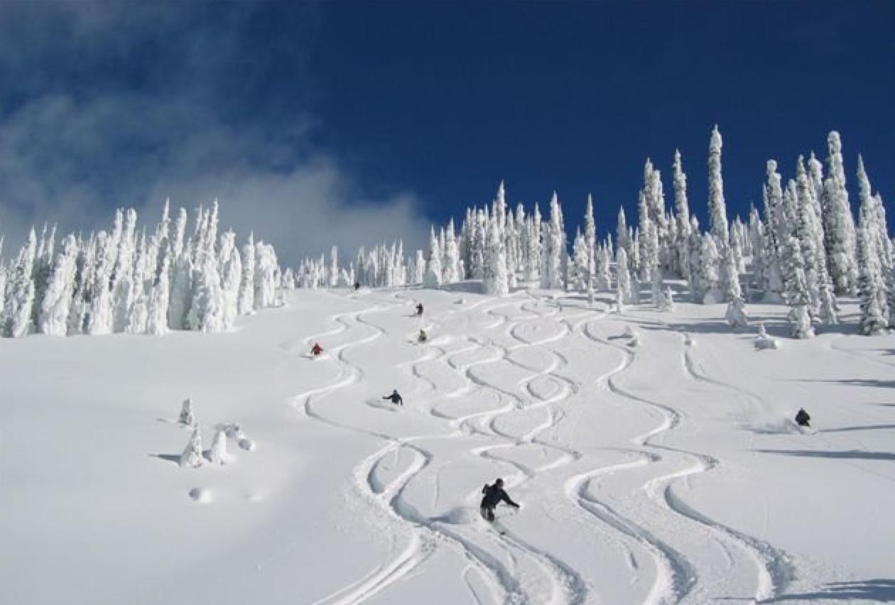 """Big Powder Safari"", BC, Canada"