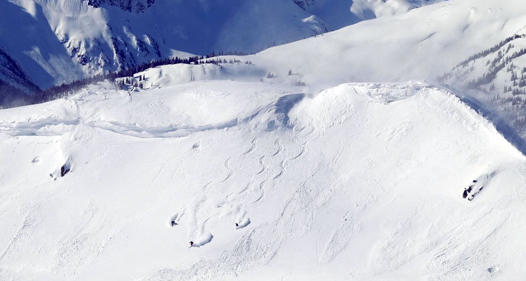 Whistler / Powder Mountain Catskiing