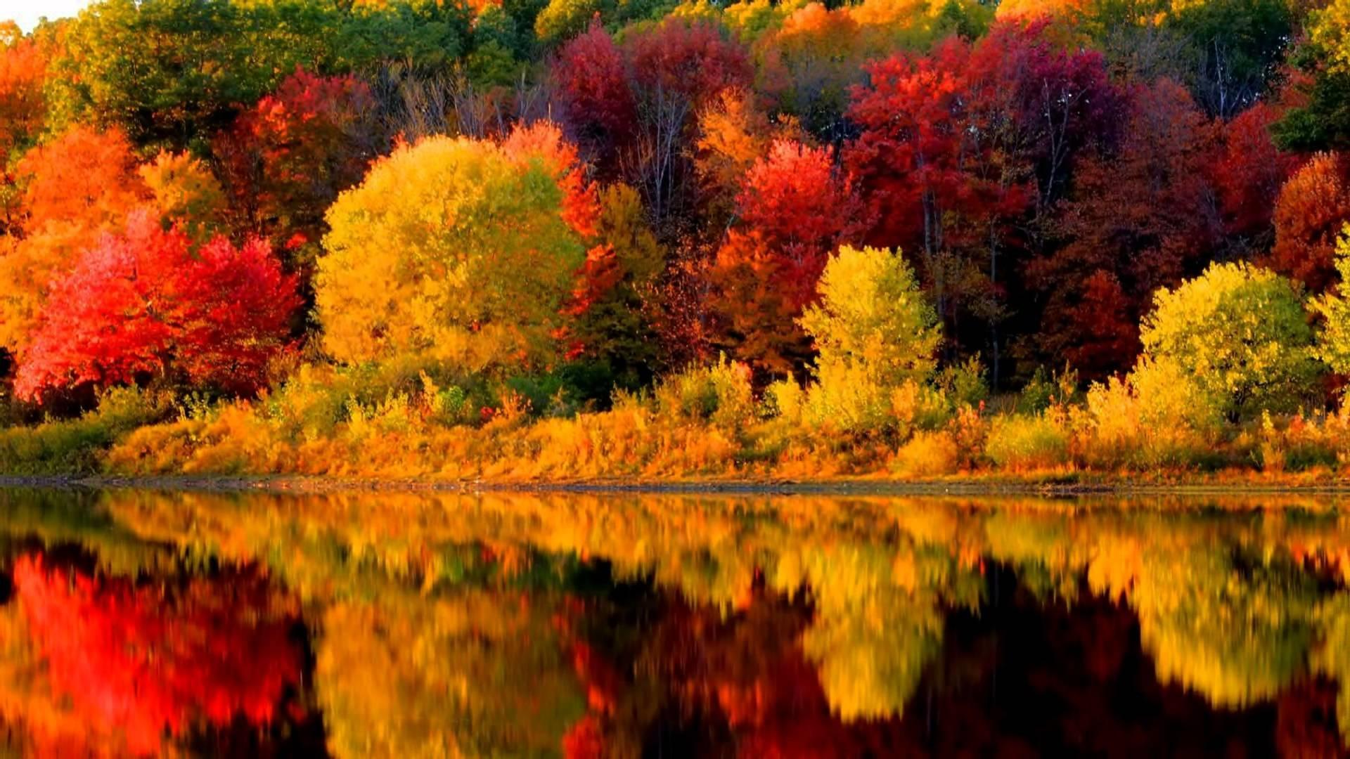Besök New England under hösten när naturen sprakar av färg…