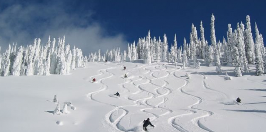 """Big Powder Safari"", BC, Canada"